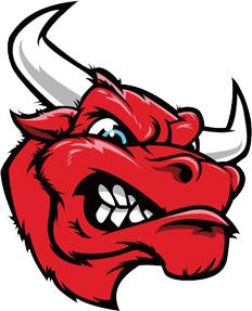 bullbot_logo